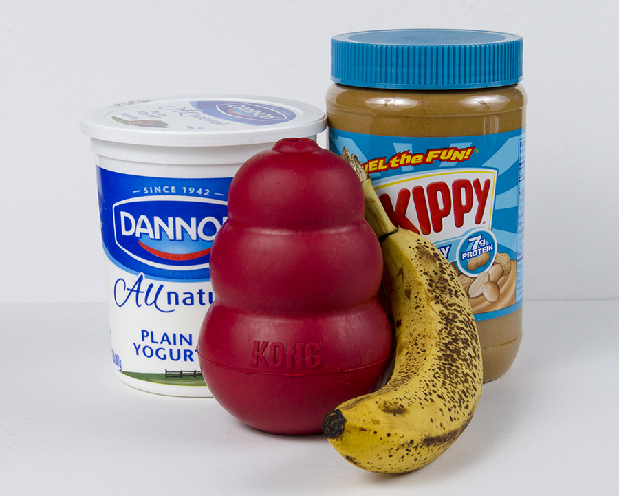 The ingredients: kong, yogurt, peanut butter, banana