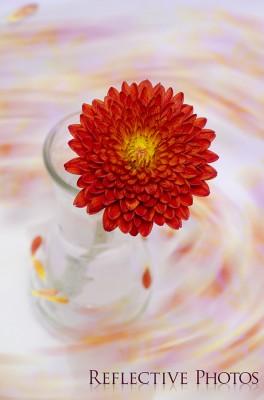 Fire Flower Flow